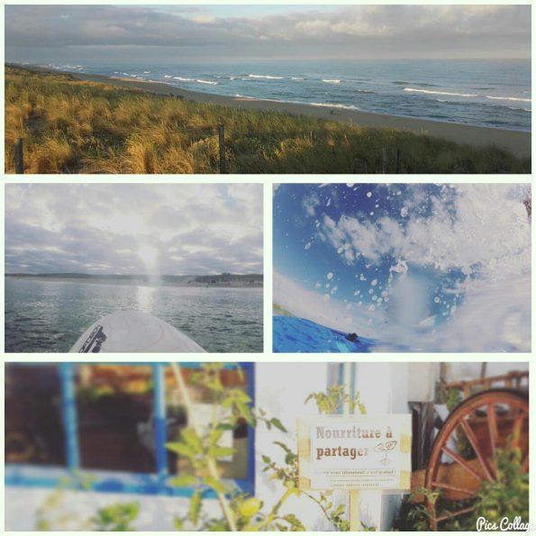 collage_juillet